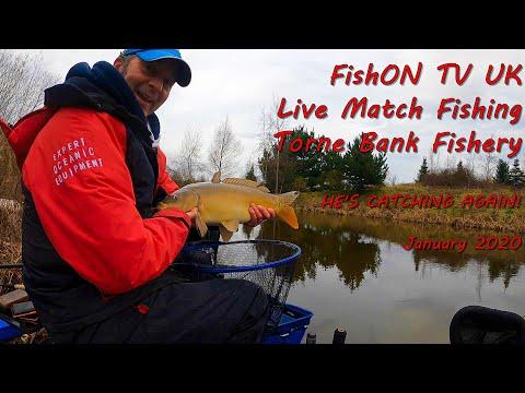FishOn TV UK : Live Match Fishing : Torne Bank Fishery : He's Catching Again And Soz Returns!