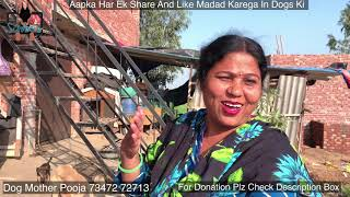 Please Help Me  Story Of Dog Mother | Pooja From Ludhiana | Scoobers Story