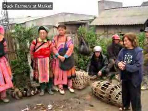 Overnight to Sapa and Sapa Market