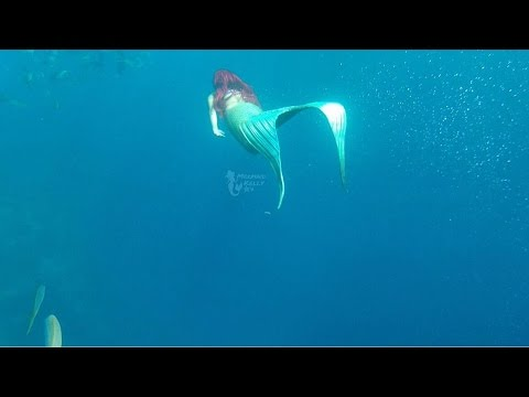 The Little Mermaid, Princess Ariel, Swims Under The Sea