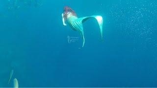 The Little Mermaid, Princess Ariel, Swims Under The Sea