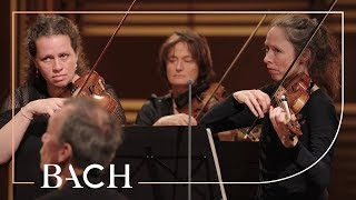 Bach - Orchestral Suite No. 3 in D major BWV 1068 - Mortensen | Netherlands Bach Society