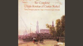 Sonata No.5 in D minor Op.118: Andante