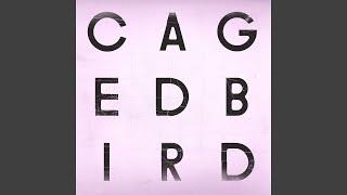 A Caged Bird/Imitations of Life (Instrumental)