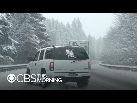 Frigid Arctic blast brings snow, cold weather to U.S.