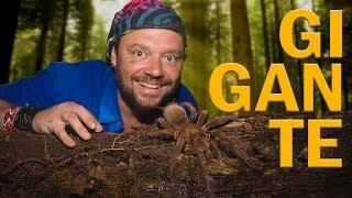 #3 EXPEDIÇÃO AMAZÔNIA | DESCOBRINDO A AMAZÔNIA | RICHARD RASMUSSEN