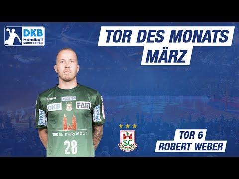 Tor 6 des Monats März 2018 - Robert Weber
