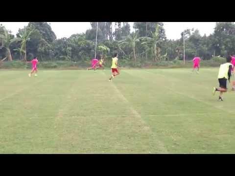 Cỏ bermuda sử dụng trong sân bóng đá 11 người