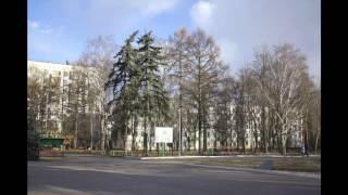 видео Снять комнату, квартиру в районе Кузьминки без посредников в Москве