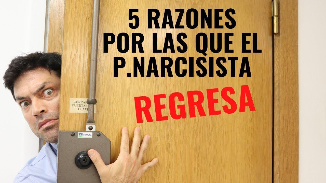 5 Razones Por Las Que El P Narcisista Regresa