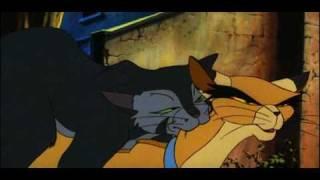 Cat mating cartoon