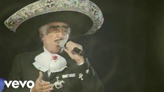 Vicente Fernández - Por Tu Maldito Amor (Audio)
