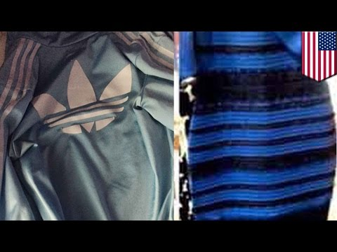 #Thejacket is the internet sequel to #thedress - TomoNews