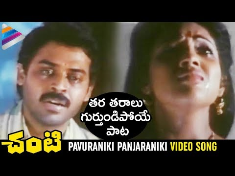 Pavuraniki Panjaraniki Full Video Song | Chanti Movie Songs | Venkatesh | Meena | Ilayaraja Hits
