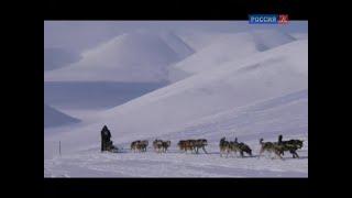 Ездовые собаки Чукотки / Россия, любовь моя! / Телеканал Культура