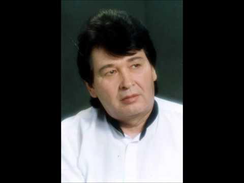 Фидан Ғафаров - Һиңә килдем иркәм