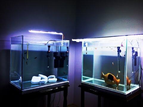 Ev Yapımı Üretim Akvaryumları Hazır |  Home Made Aquarium