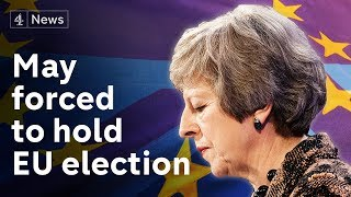 The government has finally confirmed that the European elections ca...