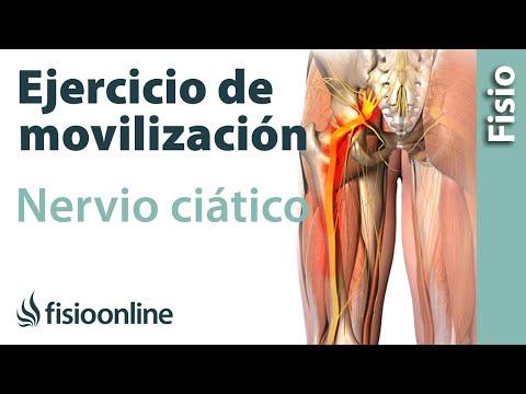 Movilización y estiramiento del nervio ciático