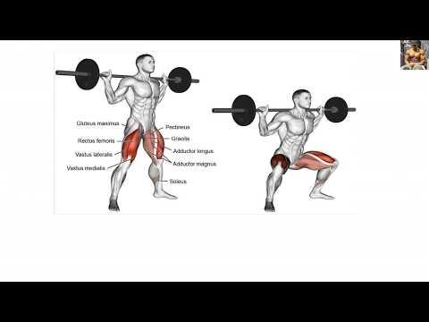 Bodybuilding Exercises/8 Weeks Workout Program For Beginners
