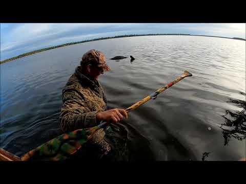 Fall Moose Hunt Part 3 Moose Camp