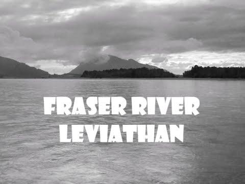 Fraser River Leviathan