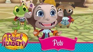 Regal Academy | Season 2 - Fairytale Pets