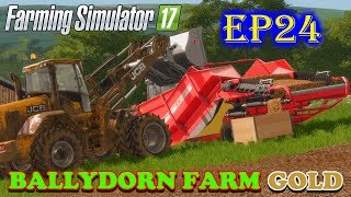Farming Simulator 17 | Ballydorn Farm Gold | Timelapse | Episode 24 | PACKING POTATO PALLETS