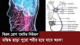 বিরল রোগ 'মোটর নিউরন' | মস্তিষ্ক ছাড়া পুরো শরীর হয়ে যাবে অচল! | Motor Neuron