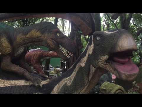 Sao Paulo Zoo See Dinosaurs Alive | DIno Safari Brazil