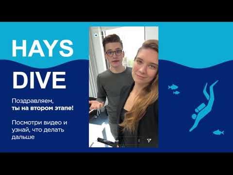 Hays Dive - Подавай заявку на участие в программе быстрого старта карьеры в рекрутменте
