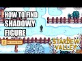 How To Find Shadowy Figure (A Winter Mystery) In Less Than 30 Seconds - Stardew Valley