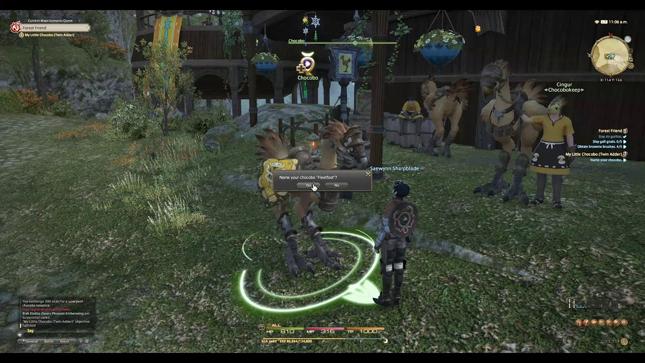 FFXIV Quest to get Mount and Starlight Bear
