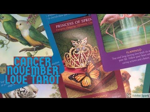 CANCER NOVEMBER 2017 | ~WISH FULFILMENT ,KARMIC CHANGES~ | LOVE TAROT READING