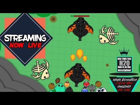 Mope.io LIVE | practicing my 1v1 skills on Eu1| TAG: [Ħ߶Ѳ] come join me!