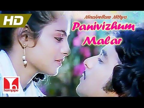 Panivizhum Malar   ILAYARAJA SONGS   NINAIVELLAM NITHYA   Full HD   Karthik,Gigi