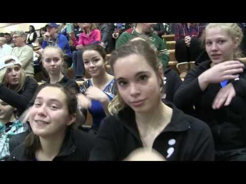 2016-2017 End Of The Year Gymnastics Video (Brainerd High School)
