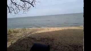 20140425 094954(Частный домик находится на курорте Затока Одесской области на живописной песчаной косе Черноморского..., 2014-04-26T19:03:38.000Z)