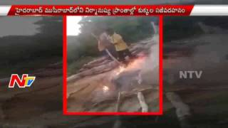5 Boys Arrested For Throwing Puppies Into Fire in Musheerabad || NTV