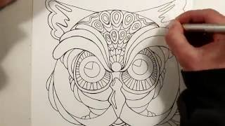 Speed Drawing an OWL - Adult Coloring Book Page