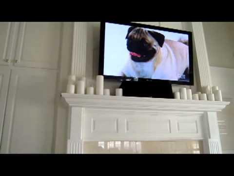 Pug Barking at Pugs on TV