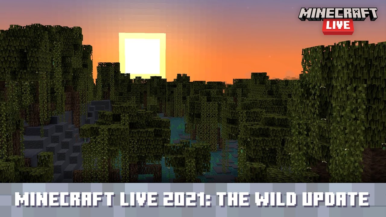 Minecraft Live 2021: A Look at The Wild Update