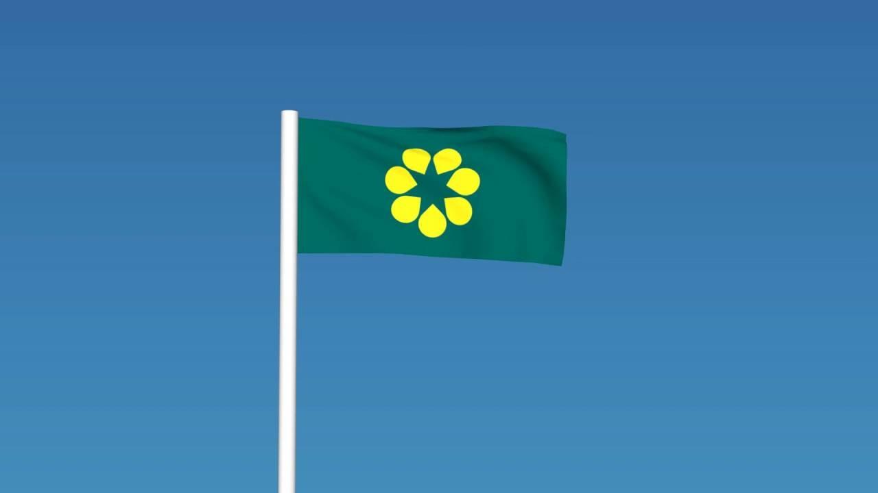 golden wattle australia flag animation youtube