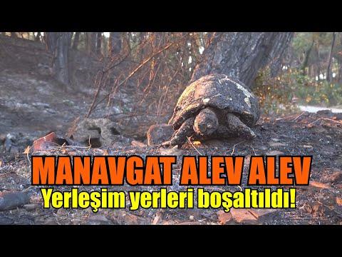 Manavgat'ta Büyük Yangın !!!