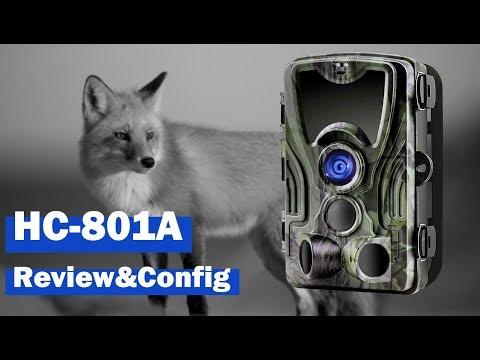 HC-801A Trail Camera Review And Configuration