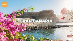 Gran Canaria – Koe koko perheen suosikkisaari
