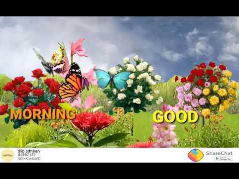 Good morning amar Bangla