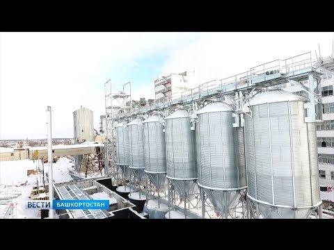 Башкортостан станет пилотным регионом по реализации биржевой торговли зерном в России