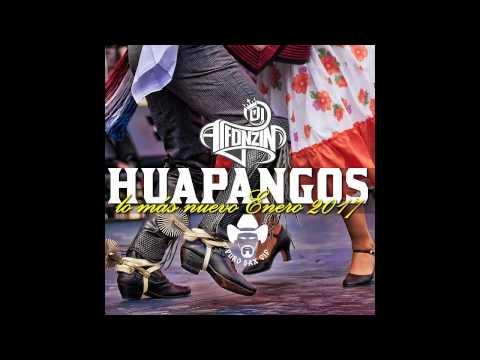 Huapangos Mix 2017 | Lo más nuevo (Fotos Seguidores) ► DjAlfonzin