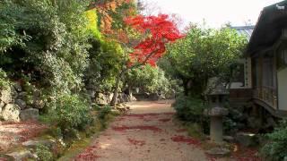 2010日本秋之旅(1)-宮島.mp4